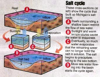salt-cycle.jpg (44627 bytes)